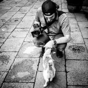 David is all about cats and cameras