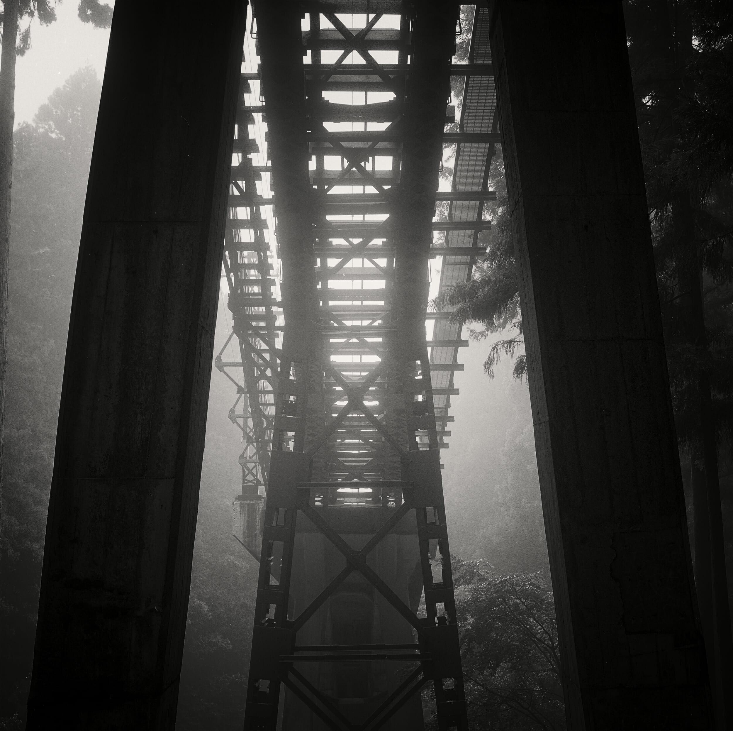 Elevated Tram Tracks, Mt Mitake, David R Munson
